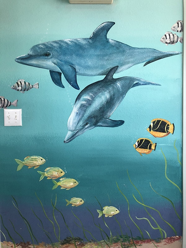 The mural inside Gulf Animal Hospital next to the reception desk and exam room doors. The mural is of different sea creatures and a few sea birds