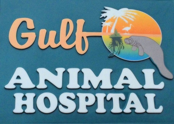 Gulf Animal Hospital